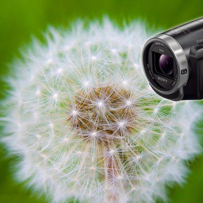 Máy quay phim Sony HDR-PJ675