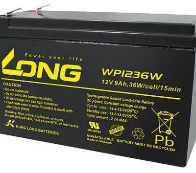 Ắc quy 12V-9Ah Long WP1236W
