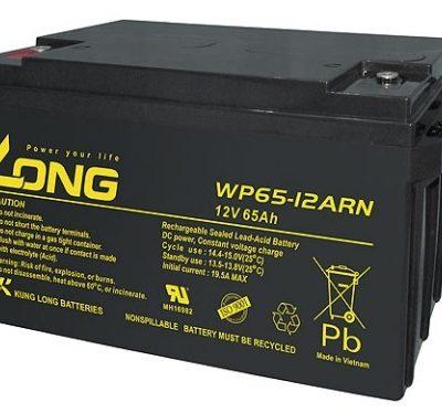 Ắc quy 12V-65Ah Long WP65-12ARN